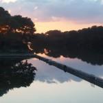 Laghi Alimini - Missipezza Residance