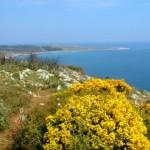 Otranto - Missipezza Residance camere vicino al mare